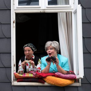"""Die Trockenblumen """"Fensterkissen zum Hof """" @ Bürgerhaus Bilk, Salzmannbau"""